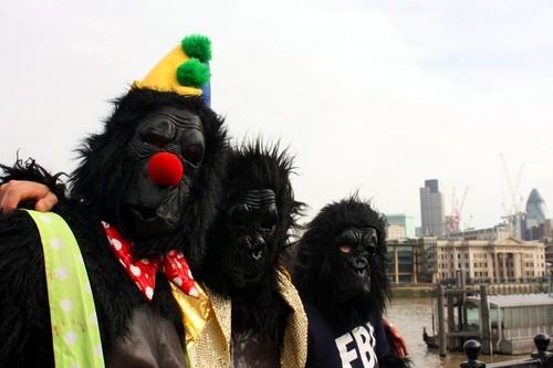 Марафон горилл