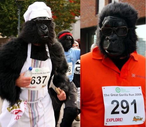 Бегущие гориллы
