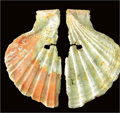 Неандертальские украшения