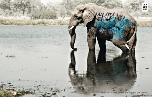 biodiversity-and-biosafety-awareness-elephant.jpg