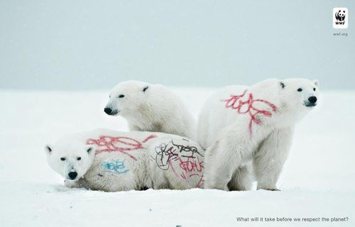 biodiversity-and-biosafety-awareness-white-bear.jpg