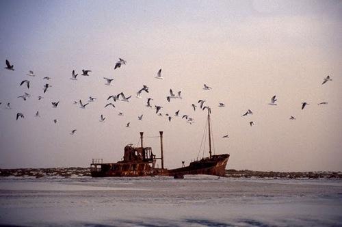 Nouadhibou-shipwreck2.jpg