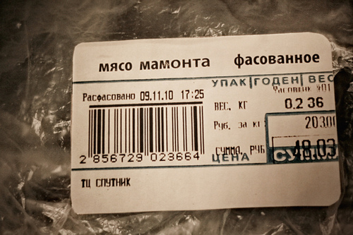 mammoth04.jpg