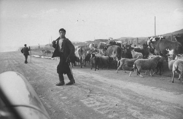 Сибирь во время визита Ричарда Никсона