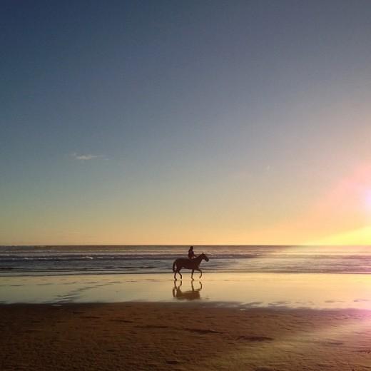 Фото с лошадью на пляже
